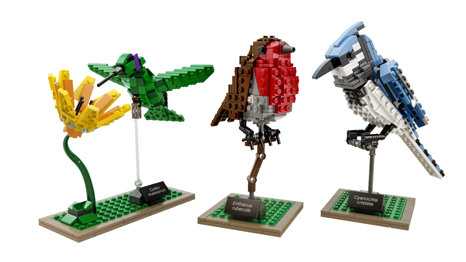 https://ideascdn.lego.com/community/lego_ci/blogs/1/1686429-21301_Prod.PNG