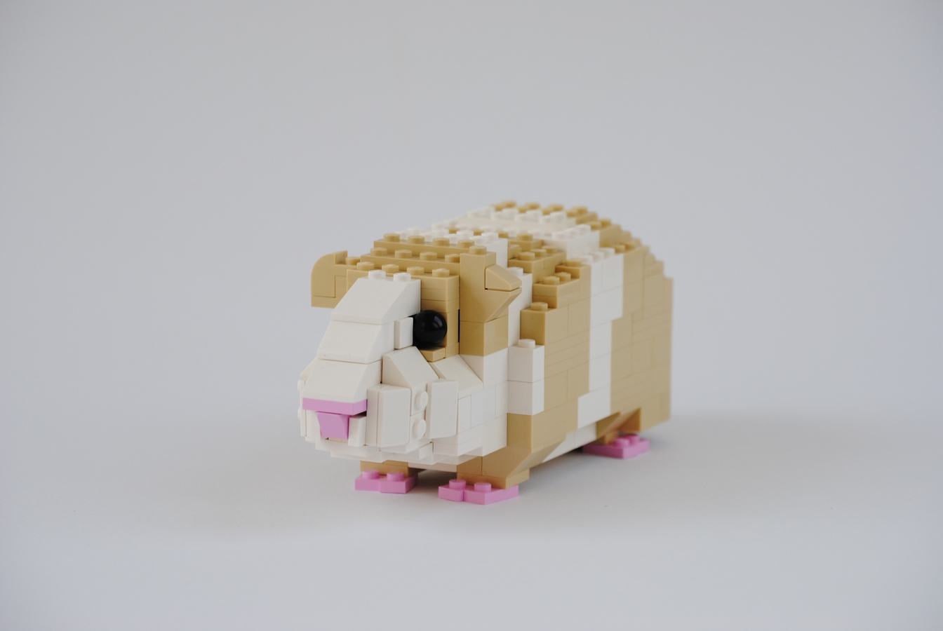 Lego Ideas Product Ideas Guinea Pig