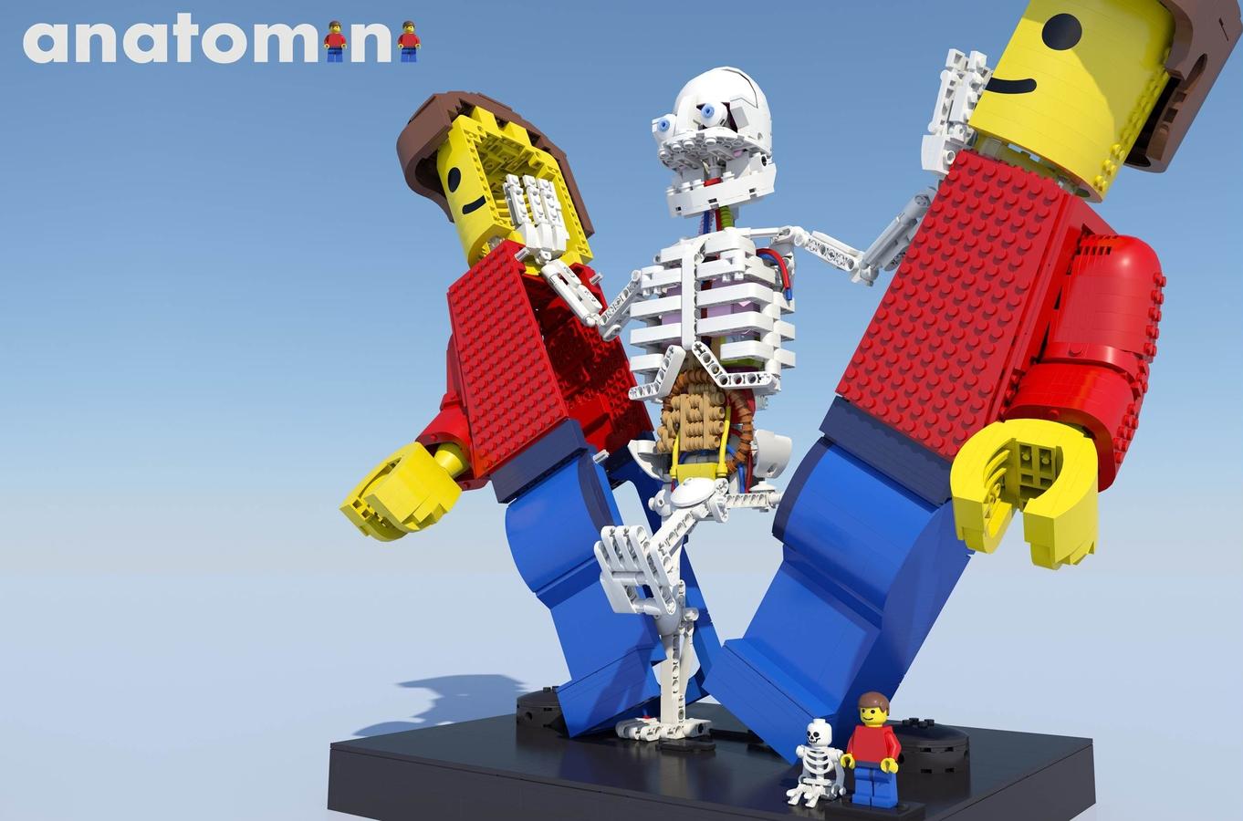 lego ideas product ideas anatomini