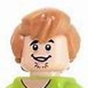 Shaggy Bricks Avatar