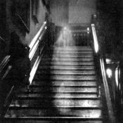 ghostmind Avatar
