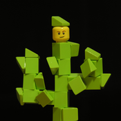 Cactus Clay Avatar