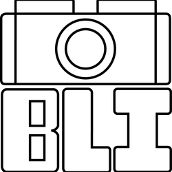 Brick Lens Images Avatar