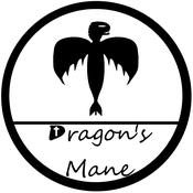 DragonsManeBricks Avatar