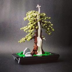 Picea Avatar