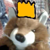 TheFoxPrince11 Avatar