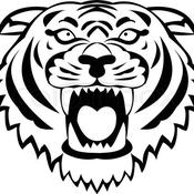 TigerMaster Avatar