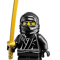 Brick Ninja Avatar
