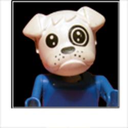 Wrinkledog Avatar