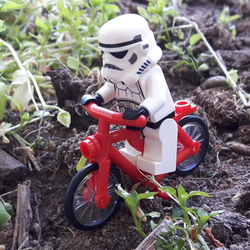 The Brick Biker Avatar