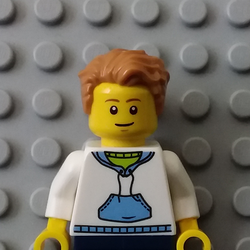 LEGO circuit Avatar