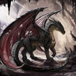 BlackDragon1661 Avatar