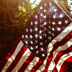 Nemo810 Avatar