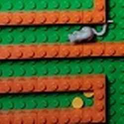 Mousemaze Avatar