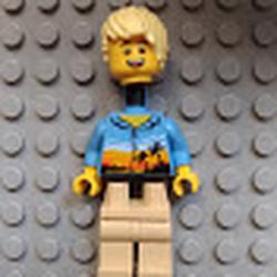 Brick seperations Avatar