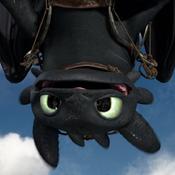 Kiwinightfury Avatar
