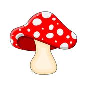 MushroomBrix Avatar