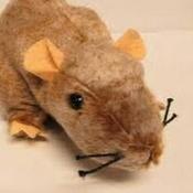 Chad The 90s Rat Avatar