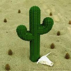 Cactus Avatar