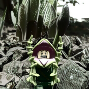 Shutterbug82 Avatar