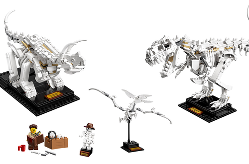 LEGO Ideas 21320 Dinosaur Fossils - Available Now Image